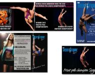Vertitude Pole Fitness Studio